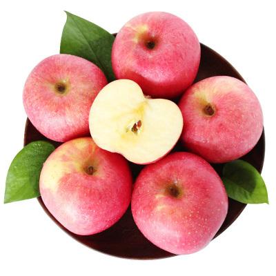 【優惠券減2元】百寶源 山東煙臺棲霞紅富士5斤蘋果水果批發新鮮蘋果