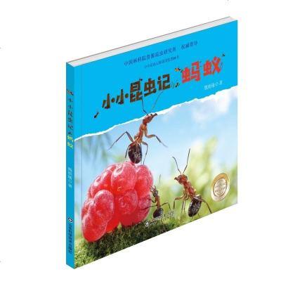 0905小小昆虫记·蚂蚁
