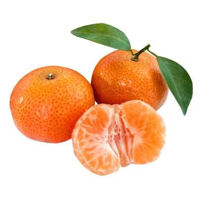广西正宗钟山砂糖橘 4.5-5斤 精品果沙糖桔 【果园直发,坏果包赔】偶数发货
