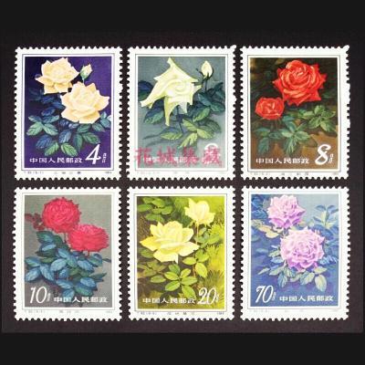 T93 月季花 郵票 套票 JT郵票 全新全品 保真