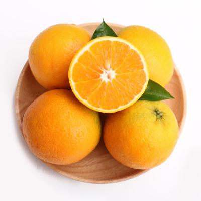 苗家十八洞 湖北秭歸夏橙臍橙2.5斤裝 單果果徑65-70mm 時令生鮮水果 華中