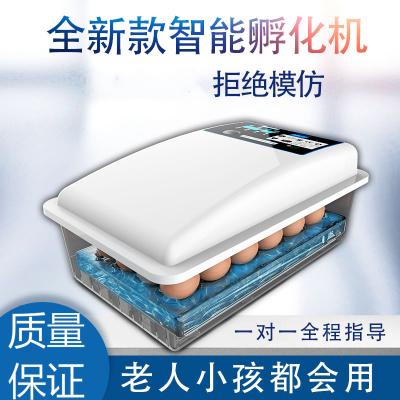 納麗雅(Naliya)孵化器小型家用孵化機全自動智能水床孵蛋器全自動家用型迷你兒童 12枚全自動智能滾軸雙電