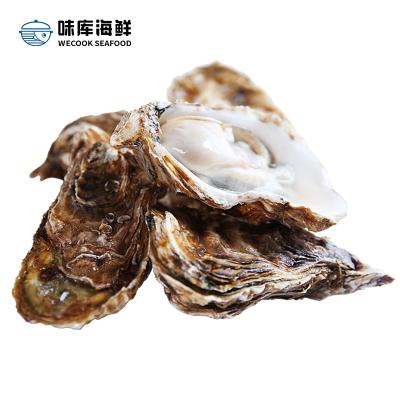 【鮮活到家】 味庫鮮活生蠔 海蠣燒烤食材 凈4斤裝200-120g/只