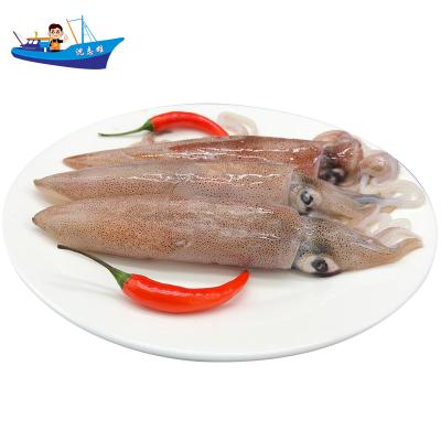 沈志雄船長 東山島海鮮精選全部有籽帶膏小管魷魚筆管魚海兔子4-7個/盒 1盒凈重400g 拍2份更實惠 海鮮禮包