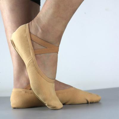 芭蕾舞蹈鞋女软底练功鞋跳舞鞋儿童白色两点猫爪鞋瑜伽鞋全弹力帆