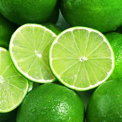 青檸檬5斤 新鮮水果 皮薄香水鮮 小青檸檬