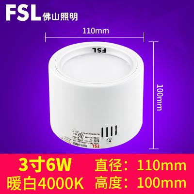 FSL брэндийн таазны гэрэл бөөрөнхий хэлбэртэй 6W цагаан өнгө