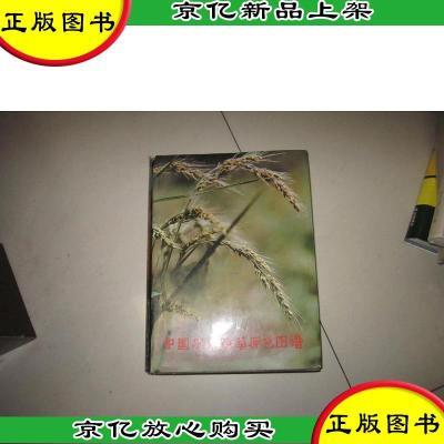 正版 中國農田雜草原色圖譜---