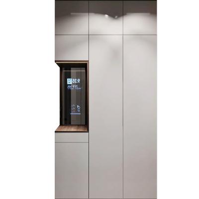 拉迷金屬玻璃酒窖洗衣房電視柜衣帽間書房書柜生態板全屋家具定制