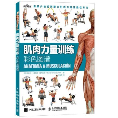 肌肉力量训练彩色图谱 来自西班牙的健身新体验 突破囚徒式健身*限 在短期内快速增加肌肉力量 健身书籍练肌肉
