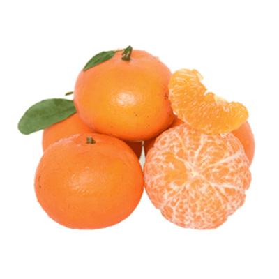 正宗广西武鸣沃柑 净重5斤 单果60-70mm 甜橘子桔子胜皇帝柑新鲜水果 贡柑不上火新鲜水果