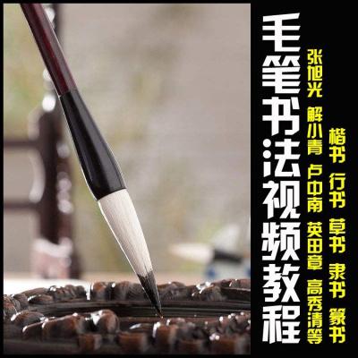 硬笔毛笔书法教学视频教程全套行书楷书书隶书田英章钢笔练字