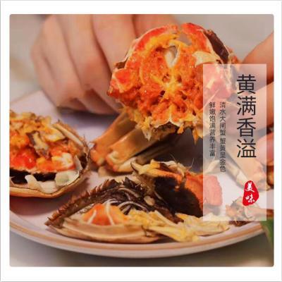 買8只送2只餐中王鮮活大閘蟹1.5-1.8兩共10只裝新鮮大閘蟹公母蟹