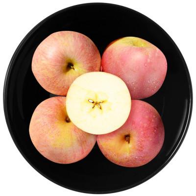 【精品果】現摘現發 新鮮紅富士蘋果2個裝 單果200g左右 新鮮水果生鮮
